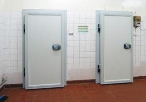 Coolroom and Freezer Doors   Carona Group